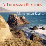 A Thousand Beauties by Mark Adam Kaplan Audiobook Review